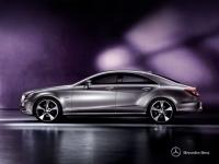 Mercedes Benz CLS-Class 350 BlueEFFICIENCY 2