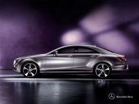 Mercedes Benz CLS-Class 2