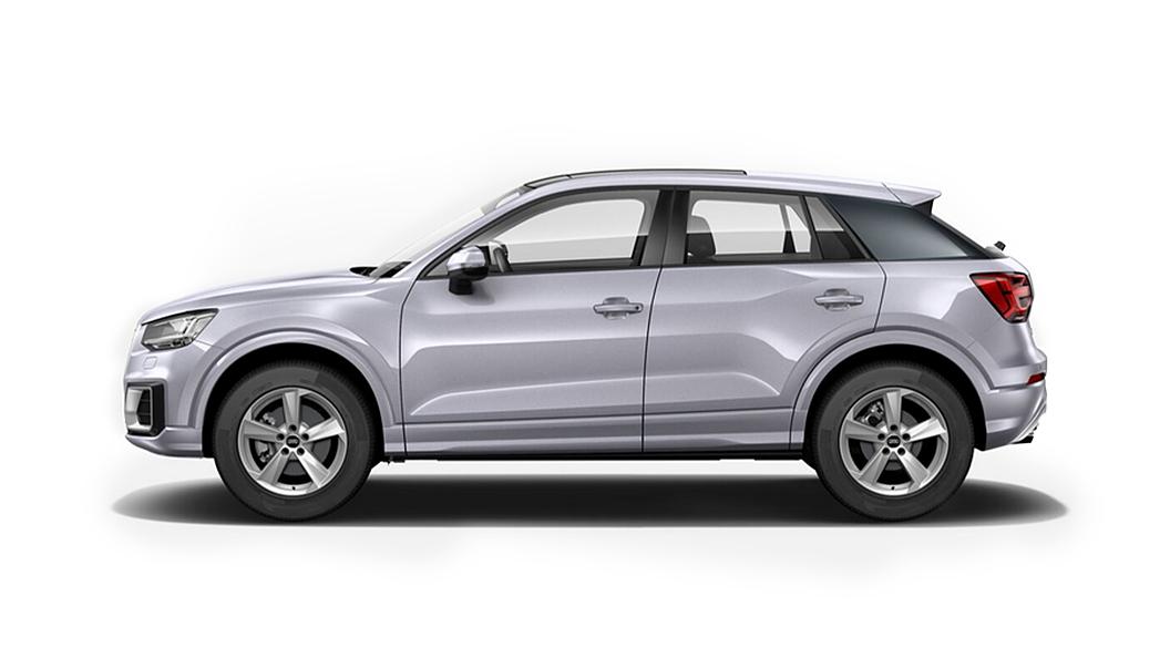Audi  Q2 Floret Silver Metallic Colour