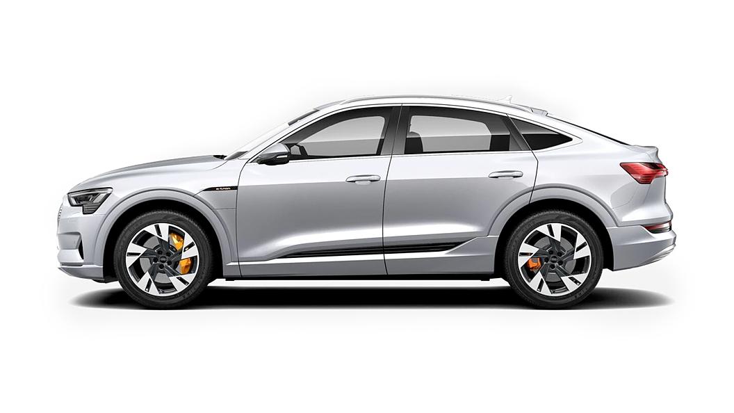 Audi  E-tron Sportback Floret Silver Metallic Colour