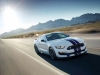 Ford Shelby Mustangs To Be Sold For Another Year
