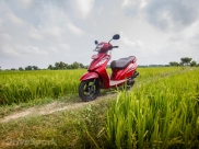 Here #Wego: Exploring Enchanting Tamil Nadu The Day Before Pongal