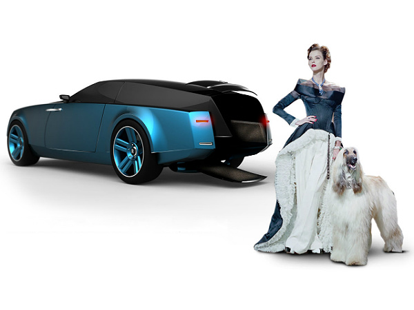 luxury cars for dogs