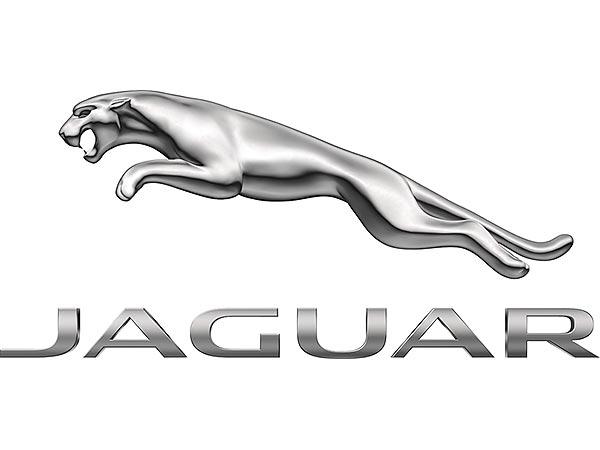 9. Jaguar