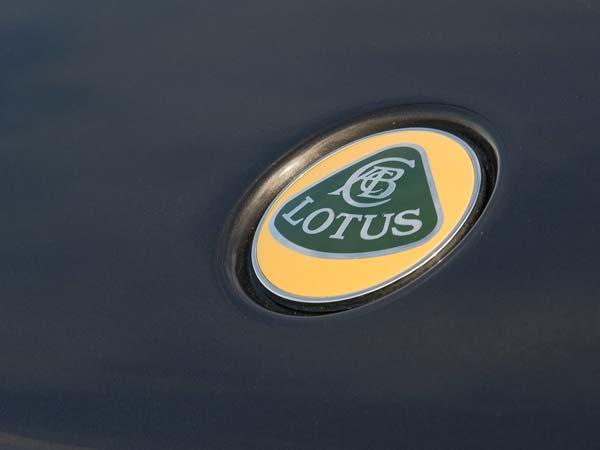8. Lotus