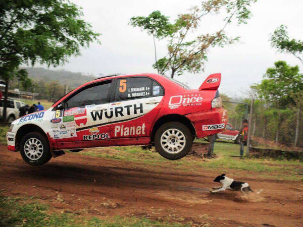 dog escapes from rally car