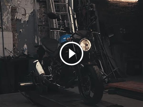 Video: Suzuki Joins The Scrambler Madness With Its 2017 SV650