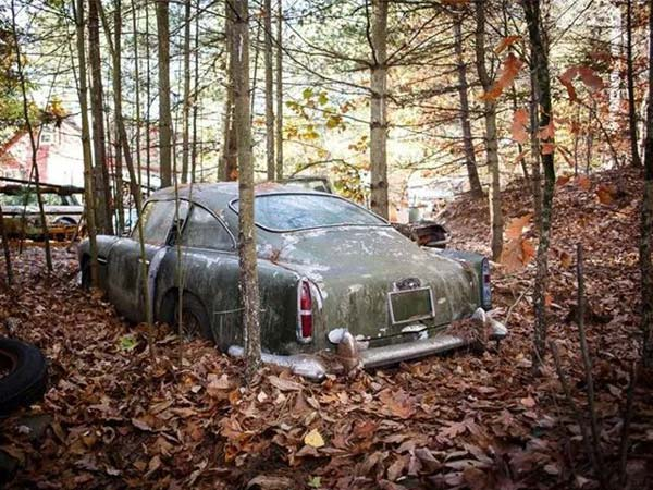 After Rotting In The Forest For Nearly 50 Years, A Classic Aston Martin DB4 Heads To The Auction