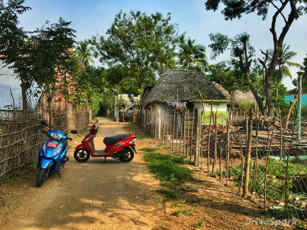 Here #Wego: Exploring Enchanting Tamil Nadu The Day Before Pongal