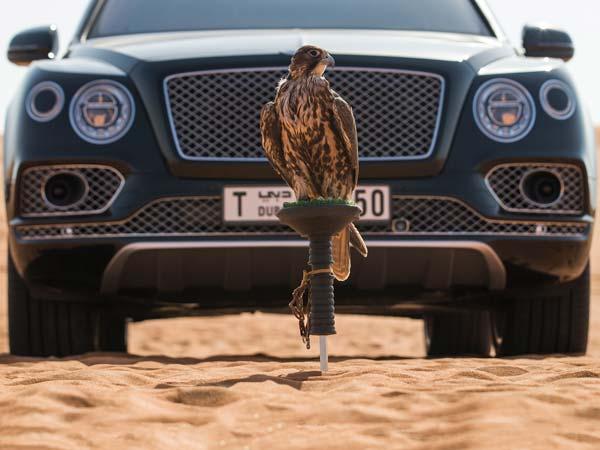 Bentley Bentayga Falconry Edition By Mulliner