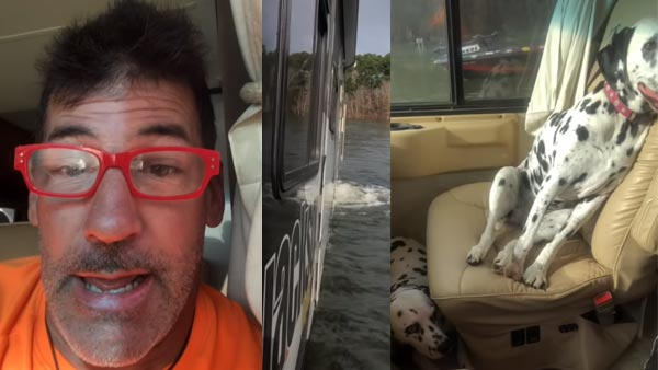 Video: Dog Accidentally Puts Vehicle Into Reverse Gear