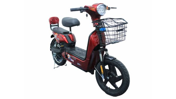 Detel Easy Electric Moped Launched In India At Rs 19,999: Range, Charge, Specs & Other Details
