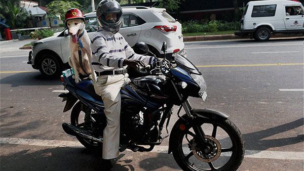 Government Issues Notification To Bring Helmets Under Bureau Of Indian Standards