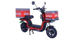 Okinawa Dual Electric Scooter Launched In India: Priced At Rs 58,998