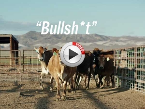 Video: Toyota Puts Cow Dung To Good Use!