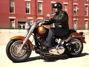 Harley-Davidson Fat Boy Celebrates Silver Jubilee!