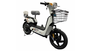 Detel Easy Electric Moped Launched In India