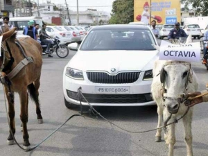 Skoda Octavia With Brake 'Ass' Power — Gets Towed By Donkeys In Public