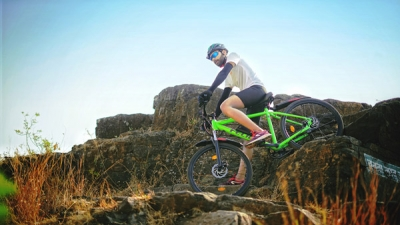 Felidae Maven Electric Bicycle Specs & Details